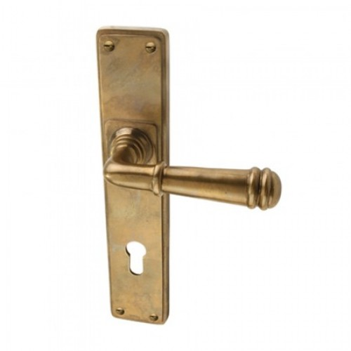 Louis Fraser Themes 718 Ribbed Lever Handle on a Long Back Plate